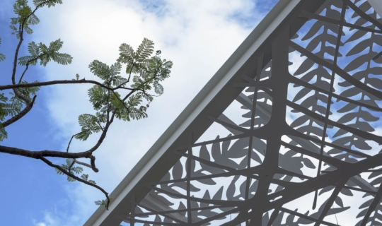 Photo of The Jan Hendrix canopy mirrors the surrounding plant life at Aguascalientes